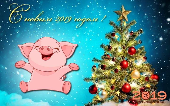 новый год свинка