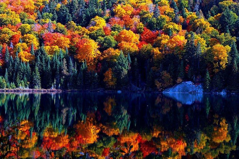красота осенних красок фото