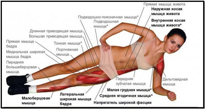 упражнения быстро убрать бока и живот